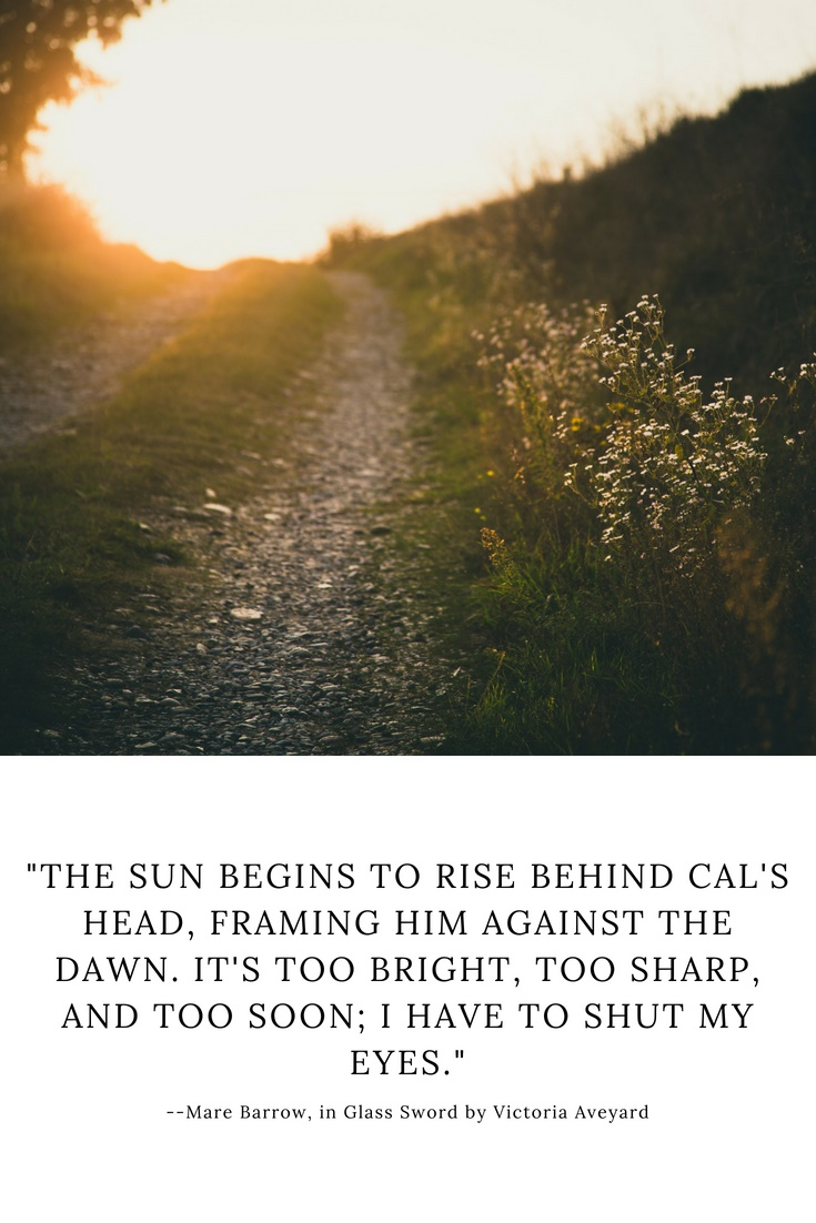 "A quote from Red Queen: ""The sun begins to rise behind Cal's head, framing him against the dawn. It's too bright, too sharp, and too soon; I have to shut my eyes."""