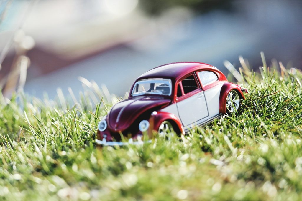 a model VW beetle car in a bed of grass